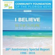 20th Anniversary Report Cover